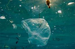 La mancha de plásticos del Pacífico triplica ya la superficie de España