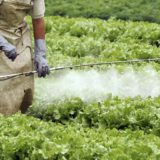 Contaminación del agua difusa de nitrógeno y fósforo
