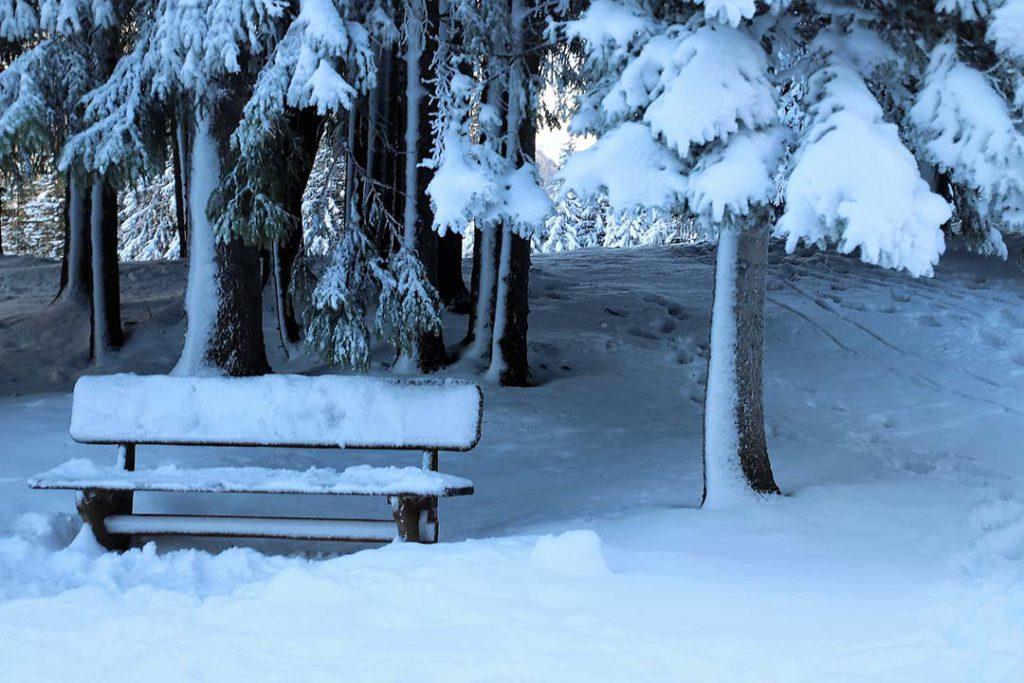 El frío y la nieve pueden matar al coronavirus es FALSO.